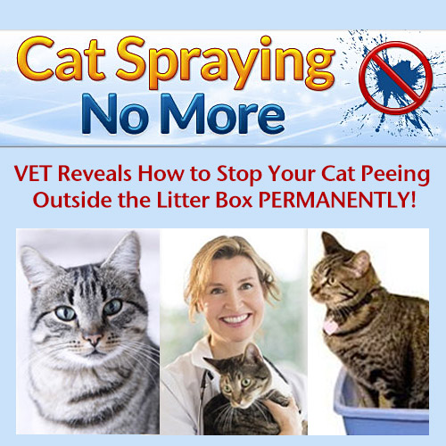 Cat Spraying No More - Reveals how to stop your cat peeing outside the litter box