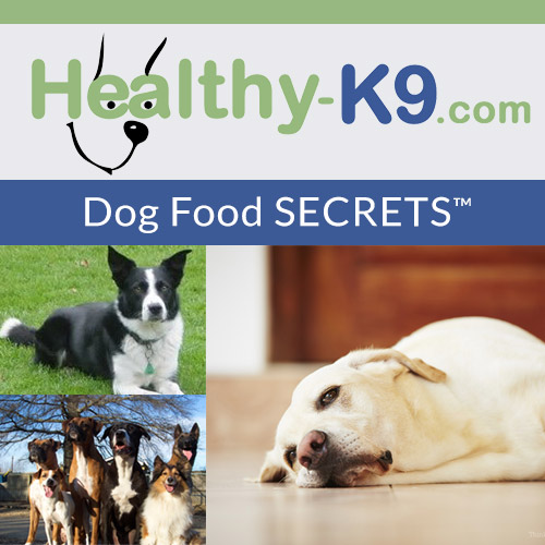 Healthy-K9 - Dog Food Secrets