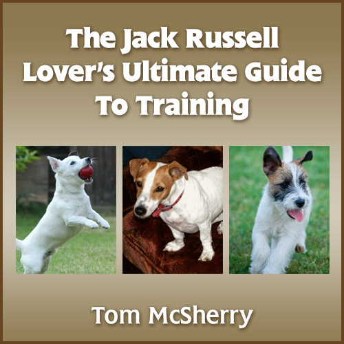 Buy The Jack Russel Lovers Ultimate Training Guide