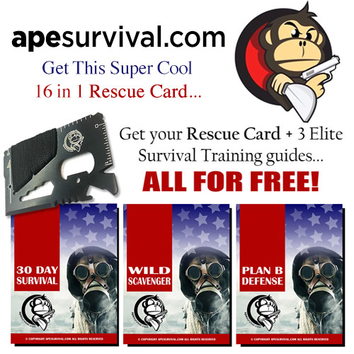 Ape Survival - Rescue Card